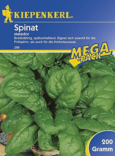 Spinatsamen - Spinat Matador 200 g von Kiepenkerl