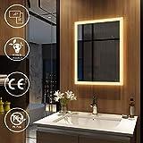 Meykoers Wandspiegel Badezimmerspiegel LED Badspiegel mit Beleuchtung 50x70cm Warmweiß 3000K,...