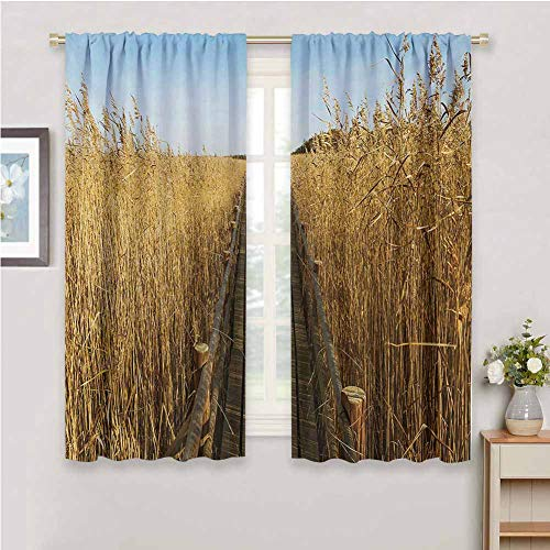 DIMICA Premium Blackout Curtains Nature Old Narrow Floating Walkway in the Lake Surrounded by Reeds Greenland Nature Theme Sliding Curtains for Patio Decor W63 x L45 Inch Yellow Brown