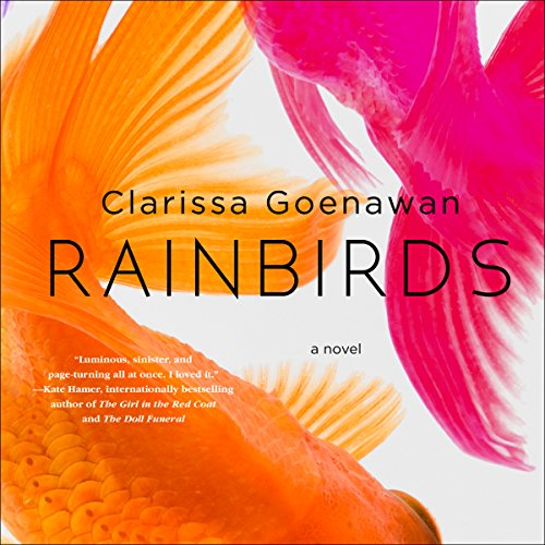 Rainbirds audiobook cover art