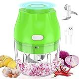 Electric Mini Garlic Chopper, Synmixx Portable Mini Food Chopper Vegetable Slicer Meat Grinder with...