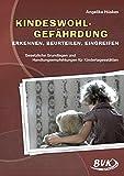 Kindeswohlgefährdung: erkennen - beurteilen - eingreifen - gesetzliche Grundlagen und Handlungsempfehlungen für Kindertagesstätten