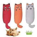 Juguete Hierba Gatera, Interactiva Mascota, Dientes para Masticar limpios, Juguetes Simulación Peluches, Hierba Gatera Almohada, Apto para Todos los Gatos y Gatitos