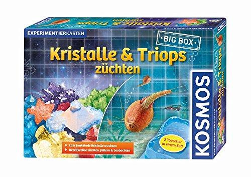 Kosmos Big Box Kristalle und Triops züchten