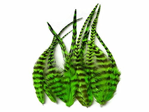 Hair Feathers ; 1 Dozen - Short Lime Green Grizzly Rooster Saddle Feathers