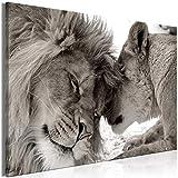murando Quadro Mega XXXL Leone 165x110 cm Straordinario Stampa su Tela XXXL per Un Facile Montaggio Fai da Te Grande Immagini Moderni Murale DIY Decorazione da Parete Africa Animale g-B-0034-ak-c