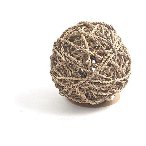 Rosewood - Juguete de Juguete para Actividades de Animales pequeños, diseño de Hierba de mar, tamaño Grande