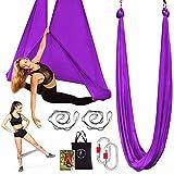 Premium Aerial Yoga Hammock - Aerial Yoga Swing Set - Antigravity Aerial Silks - Flying Yoga Sling Inversion Equipment - Hardware Included, Resistance Band, Manual and Tote Bag (Dark Purple)