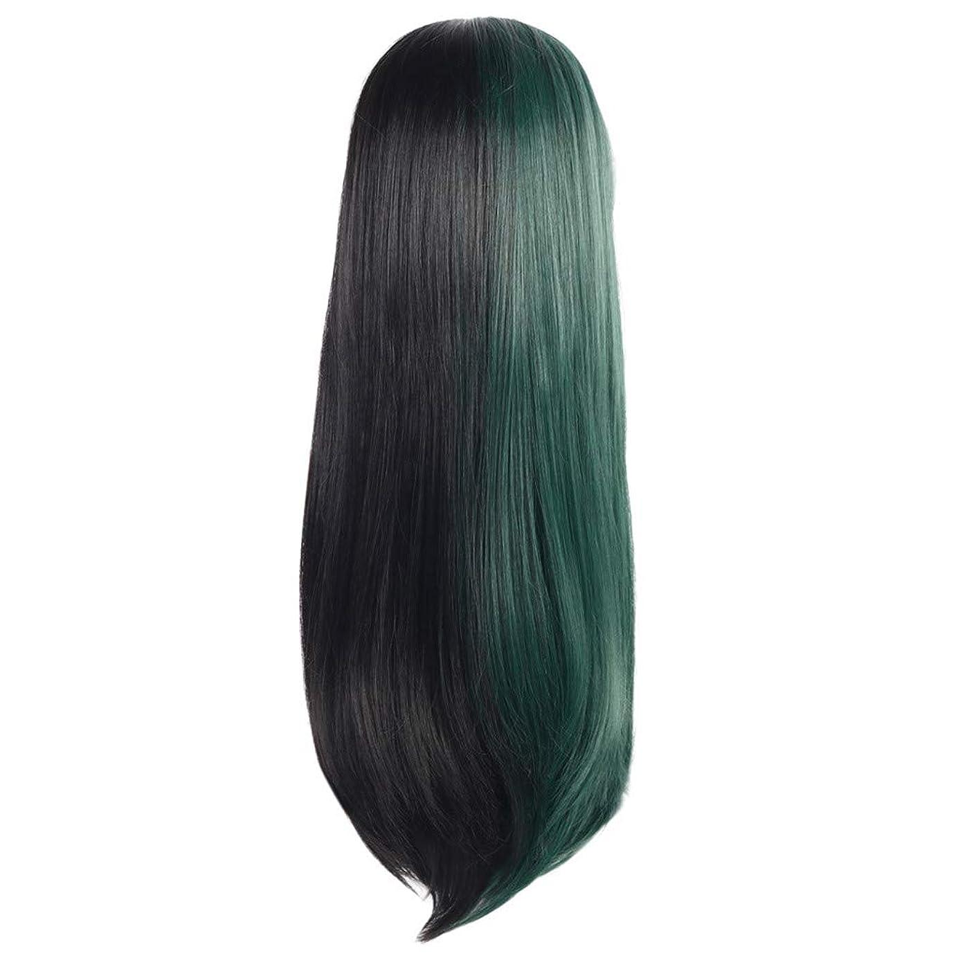準備アンプ冷蔵する女性の長いストレートの髪黒緑のかつら創造的な性格かつらローズネット