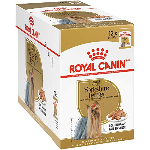 Royal Canin Breed Health Nutrition Yorkshire Terrier Loaf in Gravy Pouch Dog Food, 3 oz Pouch (Pack of 12) (722885)