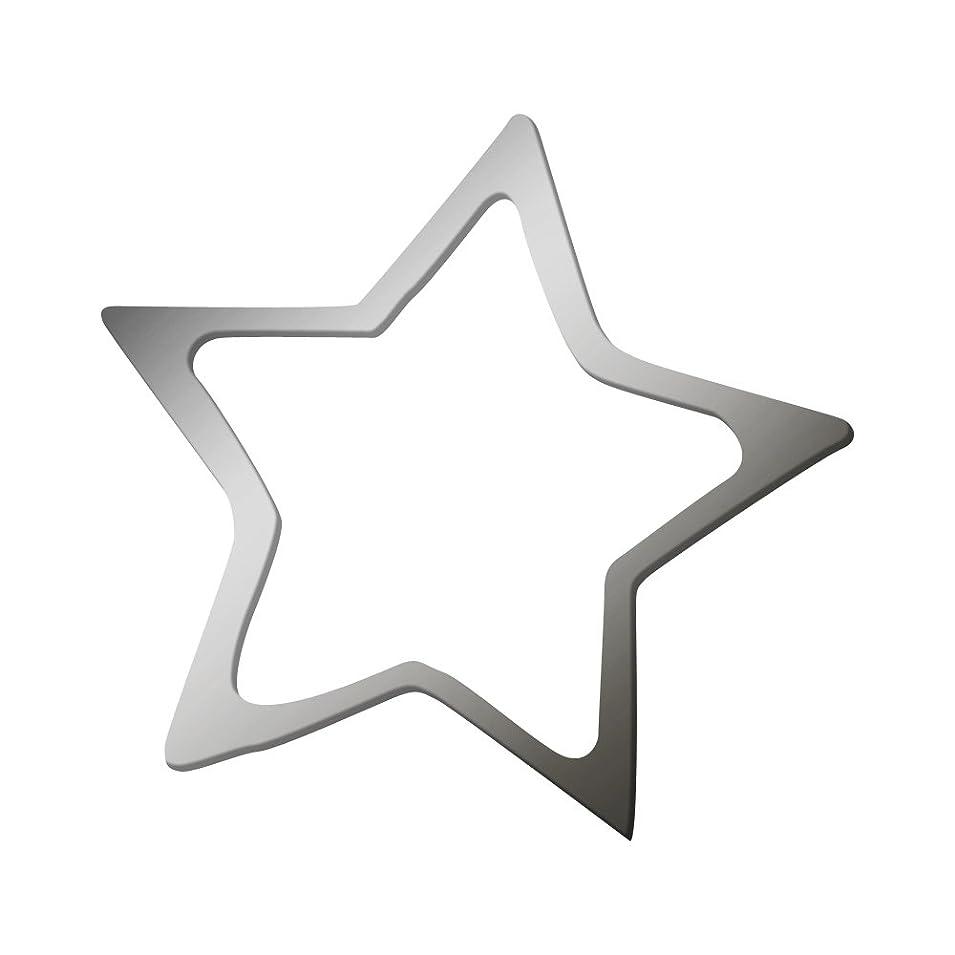ナイトスポット真鍮温室リトルプリティー ネイルアートパーツ スター 3S シルバー 20個