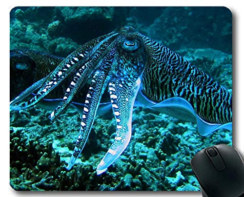 Mouse pad Gaming,Jelly Fish Theme Full of Personality Mouse pad