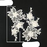 Un par de venta 3D flor bordado cuello de encaje de poliéster aplicación de bricolaje materiales de tela de encaje ABS perla vestido de costura accesorio-ZYL554