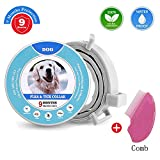 Flea Collar for Dogs with Flea Comb,Flea and Tick Collar for Dogs and Cats Adjustable and Waterproof Design,Flea and Tick Prevention Collar for Dogs 9 Months (25in)