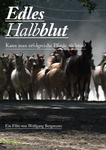 Edles Halbblut - Kann man erfolgreich Pferde züchten?