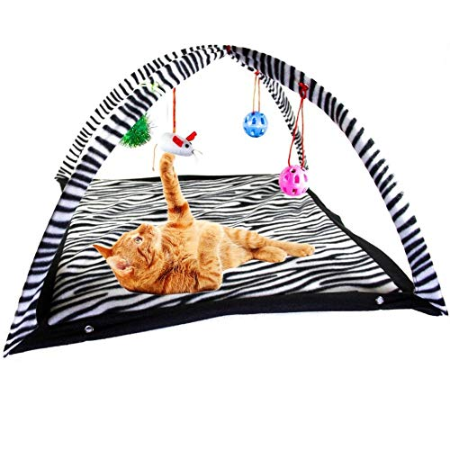 Funny Cat Play Tent With Hanging Ball Toys Balls Cat Bed Tent Kitten Mat Exercise Activity Playing Blanket Portable Pet Supplies - Zebra Pattern,61x61x34cm,a7