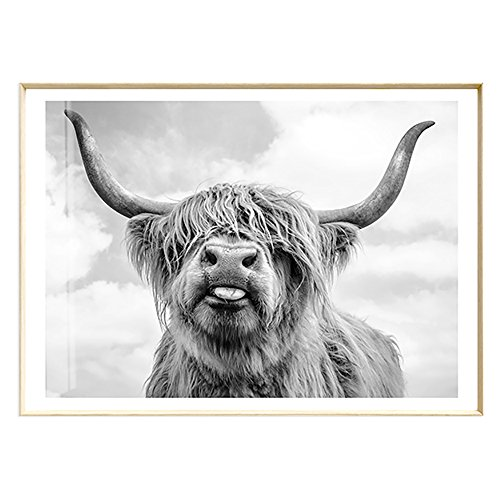 ArtLiving Cute Highland Cow Sticking Tongue Out Art Print Poster for Home Decor Wall