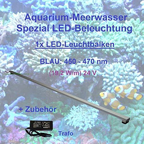 Meerwasser Aquarium - LED-Leuchtbalken 80 cm, 1 Leiste BLAU mit Trafo 60W