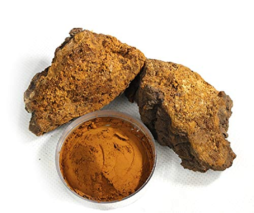 Organic Chaga Mushroom Powder Harvested from Live Birch Trees, 1 Lb Finely Powdered Organic Chaga Powder for Tea or Herbal Supplement