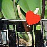 EinsSein 100x Deko Klammern Herz rot Holz - 3