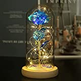 Galaxy Rose in Glass Dome with Lights Infinity Rose Flower Shines Like a Enchanted Glass Rose Best Gifts for Women with Beauty and The Beast Rose 1