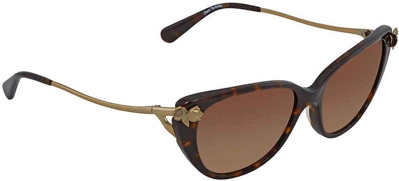 Ladies Sunglasses in Dark Tortoise and Brown Gradient