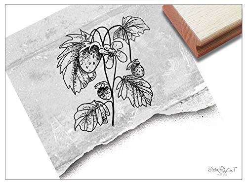 ZAcheR-fineT Stempel met aardbeien met aardbeien, afbeeldingsstempel voor kaarten, knutselen, scrapbook, borden, etiketten voor tuindecoratie, cadeautje