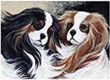 5D Diamond Painting Mosaic DIY Cavalier King Charles Spaniel pet Embroidery Stitch Cross Arts Craft for Home Gift Full Drill-Circular Drill 40x50cm