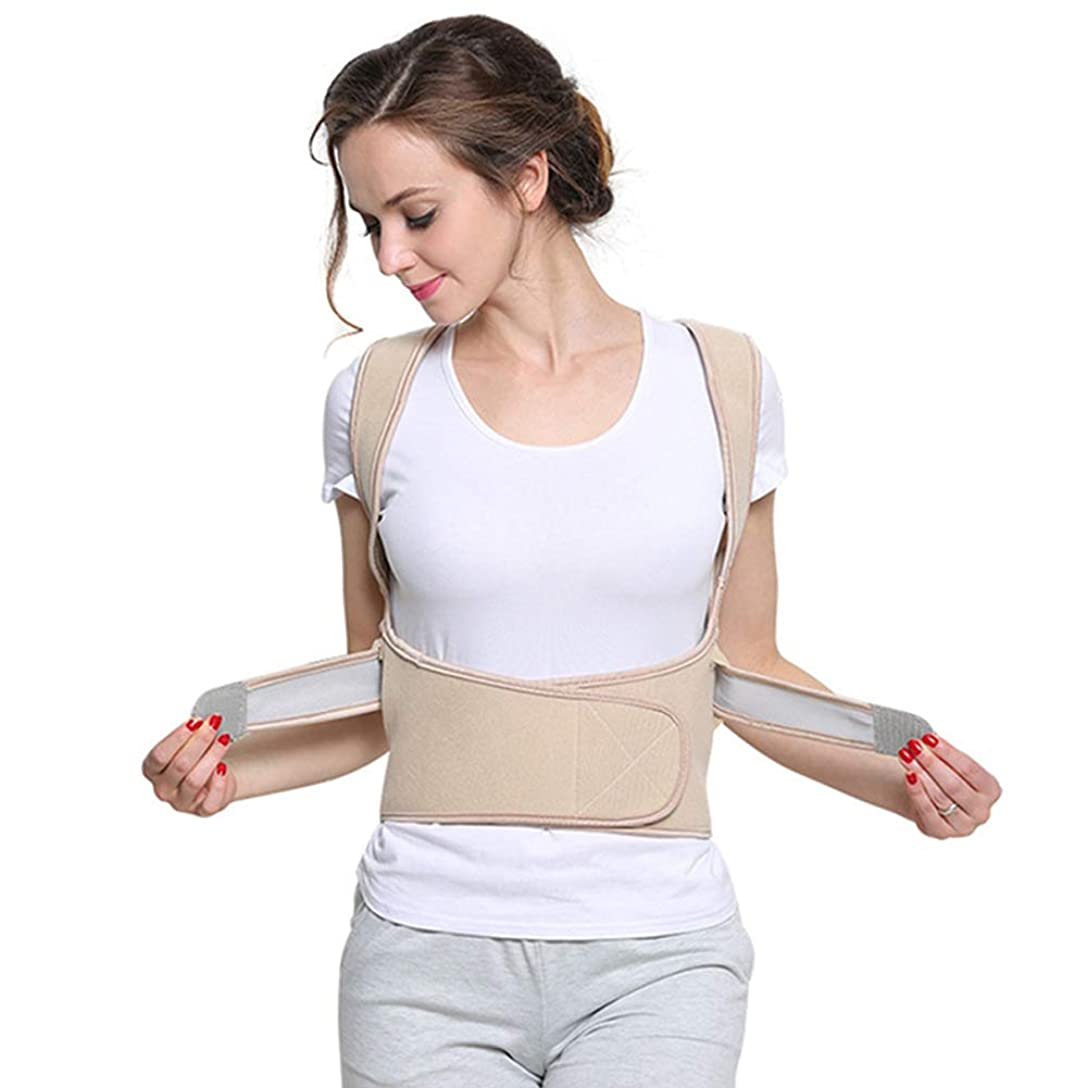 科学者対応する消毒剤姿勢矯正脊髄サポート-男性または女性のための理学療法姿勢ブレース-背中、肩、首の痛みの緩和-脊髄姿勢サポート,Flesh,XXL