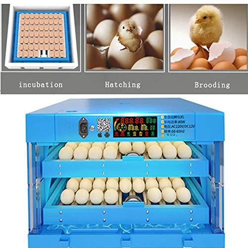 Mini Incubadora Doméstica, Nacedora Inteligente Totalmente Automática, Adecuada para Pollos, Patos, Gansos, Palomas, Loros
