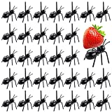 ASTARON 36 Pcs Ant Food Picks for Bug Themed Birthday Party Halloween Party Decorations Supplies Fruit Dessert Forks Reusable Ant Food Pick Appetizer Forks for Snack Cake Dessert
