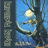 Iron Maiden: Fear of the Dark (Audio CD (Remastered))