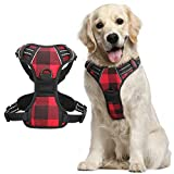 rabbitgoo Dog Harness, No-Pull Pet Harness with 2 Leash Clips, Adjustable Soft Padded Dog Vest, Reflective No-Choke Pet Oxford Vest with Easy Control Handle for Medium Large Dogs, Plaid, L