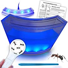 ANTARTISTS Gel Ant Farm w/ LED Light Ant Coupon. All About Ants and Observation Journal Included. Educational Observatory for Kids & Adults. Learning Science Kit.
