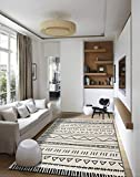 Insun Tapis de Salon Chambre Style Scandinave Moderne Design Tapis Déco Rectangle Antidérapant Lavable Style 20 80x120cm