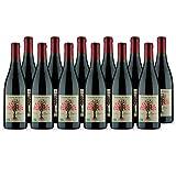 Beaumes de Venise Cuvée Hespéria Rouge 2017 - Bio - Maison Pascal - Vin AOC Rouge de la Vallée du Rhône - Cépages Syrah, Grenache - Lot de 12x75cl