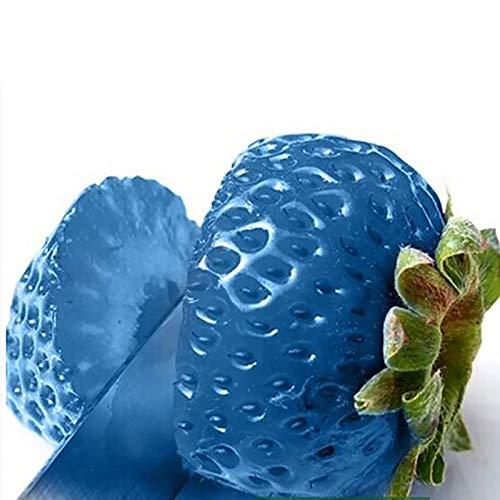 TOYHEART 100 Piezas De Semillas De Frutas De Primera Calidad, Semillas De Fresa, Nutritivas, Ricas En Vitaminas, Multicolores, Plántulas De Frutas No Transgénicas Para La Granja Azul claro