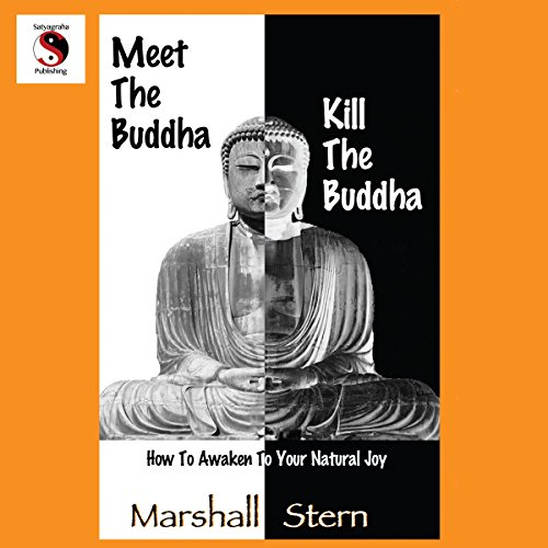 Meet the Buddha, Kill the Buddha Audiobook By Marshall Stern cover art