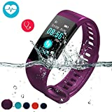 Fitness Tracker with Blood Pressure Monitor, Colorful Screen Activity Tracker Watch IP67 Waterproof Smart Fitness Purple Band with Step Counter, Calorie Counter, Pedometer Watch for Kids Women Men