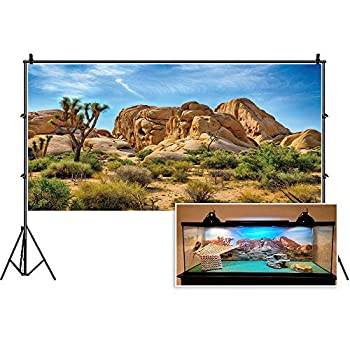 CSFOTO Polyester 30x12 inches Joshua Tree National Park Backdrop Arid Barren Cactus Sandstone Rock Climate Hot Desert Scenery Background for Photography Terrarium Background