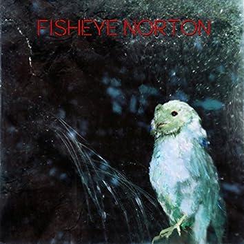 Fisheye Norton
