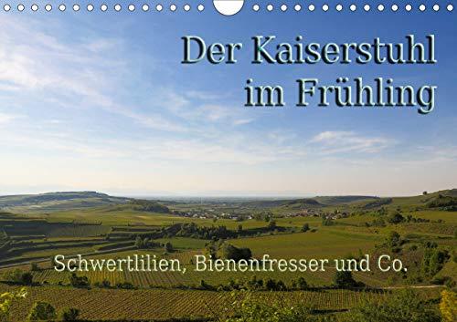 Der Kaiserstuhl im Frühling (Wandkalender 2021 DIN A4 quer)