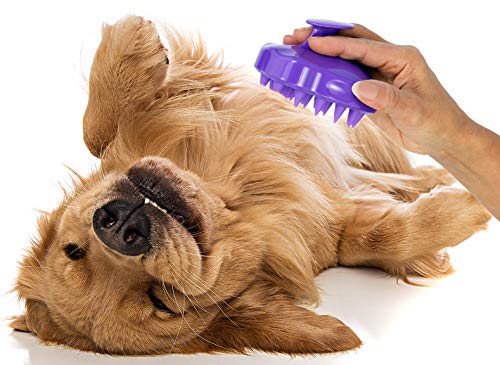 pooch Pfote Hundebürste mit extra weichen Silikonstiften - Grooming & Shedding Massagebürste