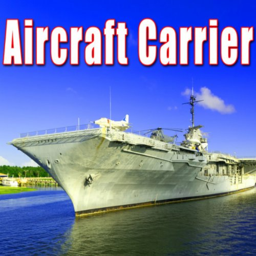 Single Short Buzz & Ring from Bridge Alarm on Aircraft Carrier
