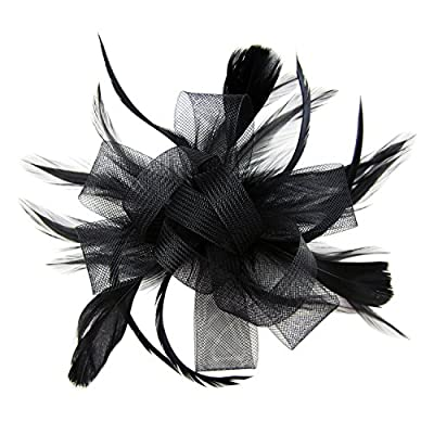 HowYouth Feather Mesh Detachable Fascinator Hat with Headband Hair Clip for Wedding Cocktail Derby Ladies Day