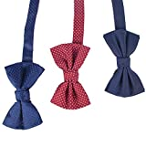 Cravates Noeud Trois pièces costume occasionnel noeud papillon auto-arc soie noeud papillon noeud papillon unisexe adapté à la balle de mariage quotidien Parfait pour une occasion formelle