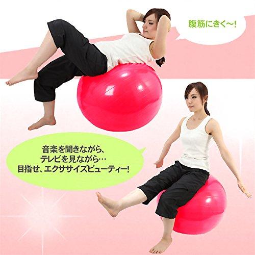 DABADA(ダバダ)バランスボールエクササイズボールヨガボール直径65cm全5色フットポンプ付き(パープル)