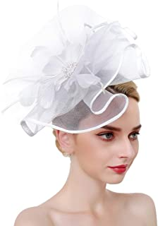 SMSW Fascinators Hat for Women Mesh Hair Clip Kentucky Derby Cocktail Headband Flower Tea Party Wedding Headwear