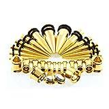 Xiatian Kit de Estiramiento de la Oreja 2Mm-10Mm Acero Inoxidable Reciclado Túnel de Silicona Expansor de Orejas Set Body Piercing Jewelry 28Pcs Amarillo