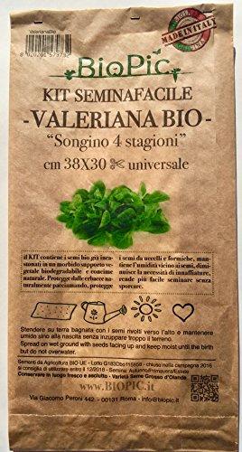 Valeriana Bio - Kit completo de canónigo para huerto de cultivo ...
